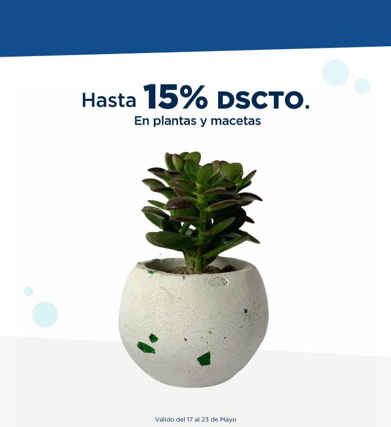 Hasta 15% de descuento en Plantas y Macetas